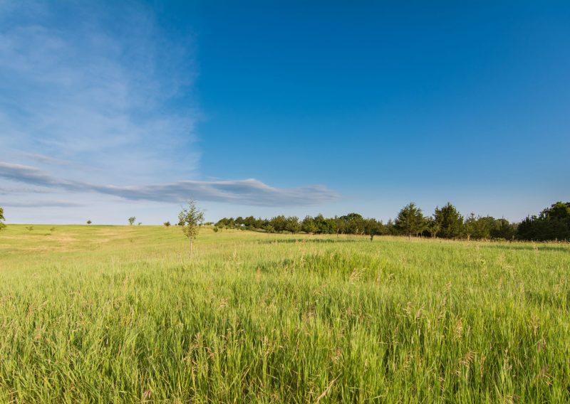 Afton Prairie Loop - Photo Credit Todd Rowe