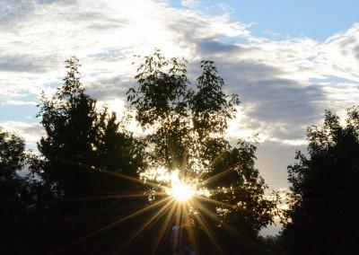Morning Sun - Photo Credit John Stewart